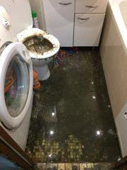 что делать если затопило квартиру канализацией