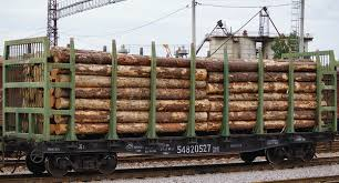Договор на перевозку круглого леса ооо и физ лицо