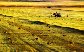 Почему могут отобрать земельный участок находящийся в собственности ижс