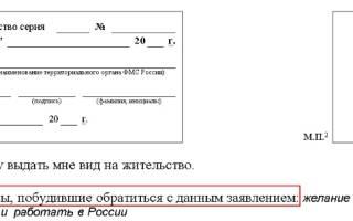 Обращец заполнения заявления на внж