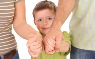 Порядок усыновления ребенка в 2020 году: что нужно, правила, документы