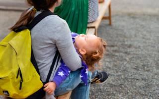 Сроки получения материнского капитала