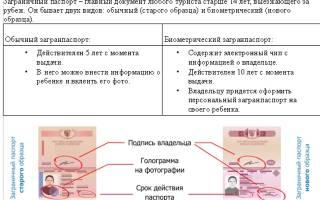Загранпаспорт пенсионеру — Срочное оформление загранпаспорта в Москве