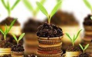Где взять кредит под залог земельного участка: ТОП предложений