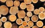 Егаис лес учет древесины для физических лиц