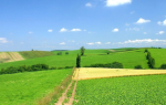 Статус земельного участка ранее учтенный что значит