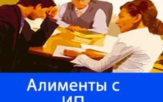 Кто будет взыскивать долг пао алиментам с индивидуального предпринимателя