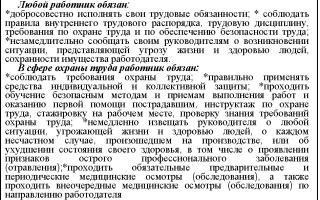 Вопрос 1.8.2. Трудовые обязанности работника