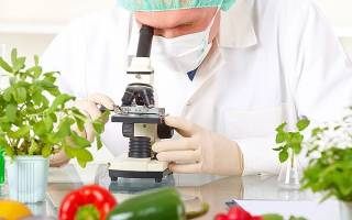 Как проводить внешнюю экспертизу на продукты питания