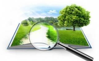 Как установить хозяина земельного участка