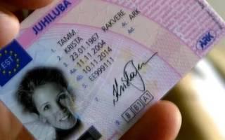 Как проверить лишение водительских прав иностранного гражданина онлайн