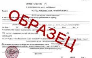 Как сделать временную регистрацию в СПб