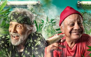 Мошенничество в особо крупном размере хранение марихуаны