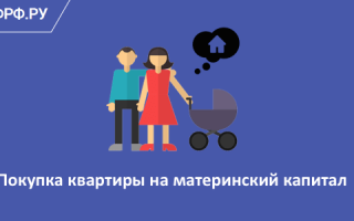 Покупка квартиры под материнский капитал: можно ли использовать мат капитал?