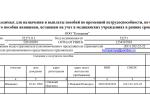 Реестр больничных листов для возмещения ФСС образец