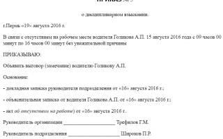 Образец приказа о наказании сотрудника учрежения