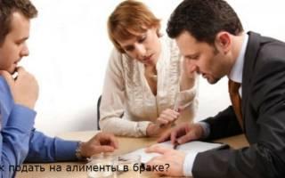 Как подать на алименты в браке какие нужны документы