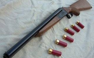 Незаконное хранение оружия за и против