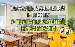 Заявление от родительницы в школу образец
