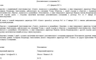 Дополнительное соглашение смена директора образец