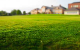 Доверенность на оформление земельного участка образец бланк