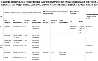Данные на налогоплательщиков: какие сведения есть у ФНС России