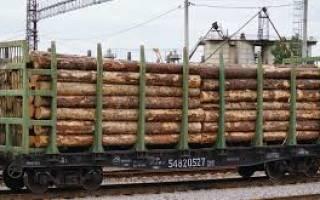 Договор на перевозку леса с физическим лицом образец