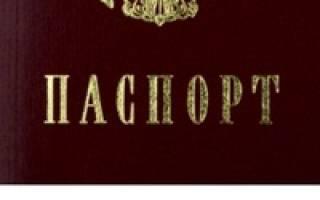 Новый закон о носителях русского языка