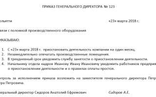 Протокол о приостановлении деятельности ооо образец
